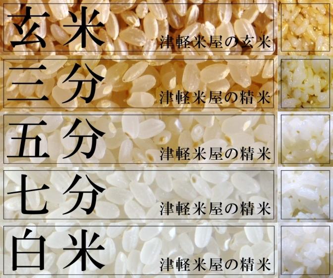 精米,玄米,三分,胚芽米,五分,七分,白米