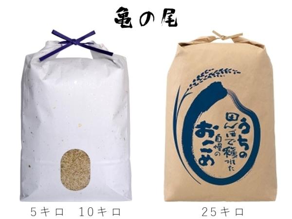 米,お米,玄米,自然栽培,亀の尾,和紙米袋,津軽米屋
